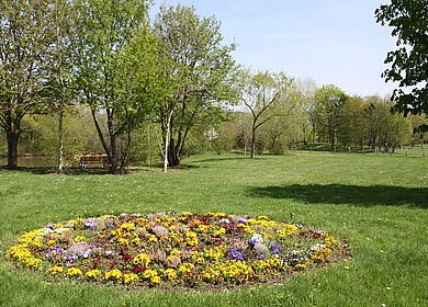 Eine Grüne Wiese im Kurpark im Kurort Kueser Plateau.